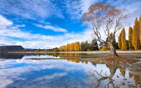 Картинка осень, небо, облака, деревья, горы, озеро, отражение