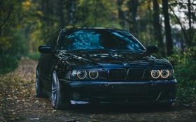 Обои Чёрная, BMW, E39, Седан
