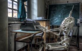 Обои комната, ситуация, скелет, доска, пишущая машинка