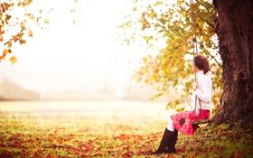 Обои поле, осень, трава, природа, качели, дерево, листва