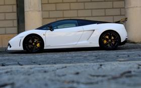 Обои Lamborghini, wall, white, Gallardo, supercar, street, LP560-4