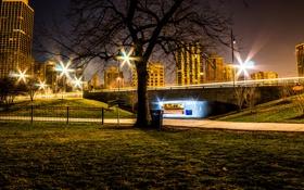 Картинка ночь, мост, огни, парк, дерево, газон, Чикаго