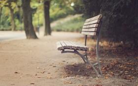 Картинка осень, скамейка, скамья