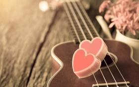 Обои цветы, сердце, гитара, love, vintage, heart, romantic