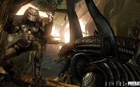 Обои ИГРА, лес, Alien vs Predator, чужые, трупы военных, хищник