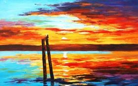 Обои закат, небо, солнце, ярко, птица, красиво, вода