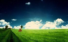 Обои поле, дорога, знак
