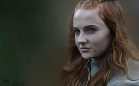 Обои девушка, фон, Game of thrones, Sansa Stark
