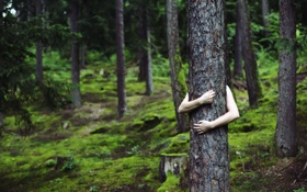 Картинка одиночество, дерево, руки