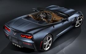 Обои машина, Corvette, Chevrolet, суперкар, задок, Convertible, Stingray