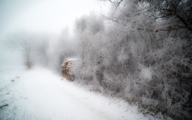 Картинка зима, дрова, туман, иней