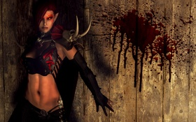 Обои девушка, стена, кровь, вампир, Skyrim