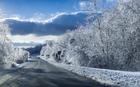 Картинка зима, дорога, снег, пейзаж, машины, голубое небо