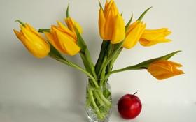 Обои тюльпаны, натюрморт, яблоко, ваза