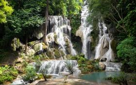 Обои зелень, лес, деревья, скала, тропики, камни, водопад