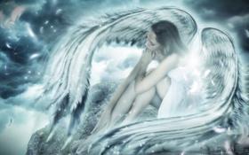 Обои небо, девушка, тучи, фантастика, крылья, ангел, перья