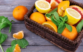 Картинка цитрусы, листья мяты, грейпфрут, апельсин, мандарин, дольки