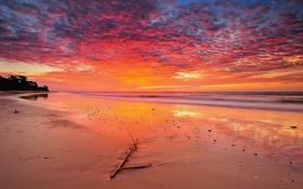 Обои облака, горизонт, небо, восход, волны, море, пляж