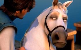 Обои Максимус, Рапунцель: запутанная история, конь