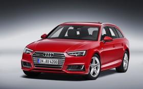 Обои Audi, ауди, TDI, quattro, Avant, 2015, S line