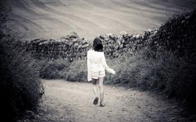 Обои дорога, поле, трава, путь, одиночество, камни, настроение