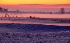 Обои поле, зима, туман
