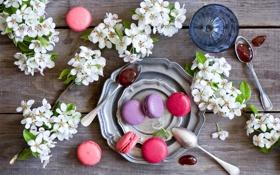 Обои цветы, печенье, flowers, варенье, jam, cookie, macarons