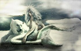 Обои холод, взгляд, снег, фантастика, русалка, арт, хвост
