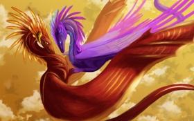 Картинка фиолетовый, цвета, полет, красный, фантастика, драконы, арт