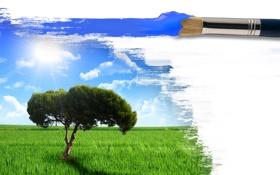 Обои лето, небо, трава, солнце, пейзаж, креатив, дерево