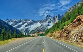 Обои дорога, горы, Вашингтон, Washington, North Cascades National Park, национальный парк Норт-Каскейдс