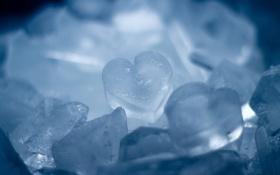 Картинка лед, макро, сердечки