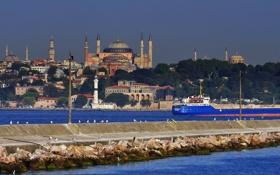 Картинка Турция, Стамбул, птицы, море, пролив, мол, мечеть