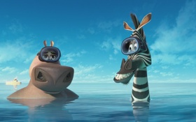 Обои море, вода, зебра, бегемот, мадагаскар 3