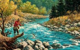 Картинка осень, лес, деревья, пейзаж, природа, река, камни