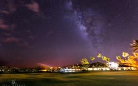 Картинка звезды, пальмы, газон, Млечный Путь, photographer, Kenji Yamamura