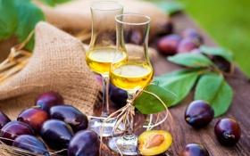 Обои вино, бокалы, сливы, wine, plum