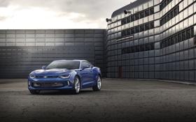 Обои Chevrolet, Camaro, шевроле, камаро, 2015