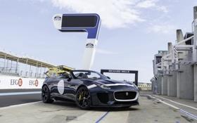 Обои Jaguar, ягуар, F-Type, 2014, Project 7