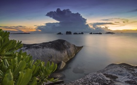 Обои море, закат, камни, скалы, побережье, Индонезия, мангры