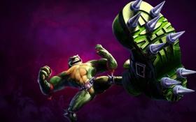 Обои Гнев, Killer Instinct: Season 3, Rash, Killer instinct, Зелёная Жаба, Рэш, Шипы