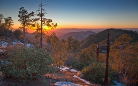 Картинка закат, лес, горы
