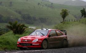 Обои Красный, Авто, Спорт, Машина, Грязь, Citroen, WRC