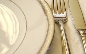 Обои платье, тарелка, нож, вилка, столовые приборы