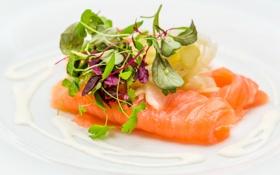 Обои закуска, salmon, fish, зелень, appetizer, рыбка, greens