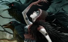 Картинка девушка, птицы, магия, перья, арт, капюшон, когти