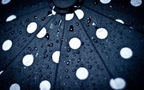 Обои капли, узор, под зонтом
