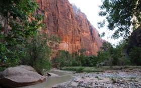 Обои горы, природа, скала, фото, США, парки, Zion Utah