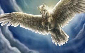 Картинка небо, взгляд, облака, полет, фантастика, лошадь, крылья