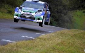 Обои Ford, Дорога, Скорость, Асфальт, WRC, Rally, Fiesta